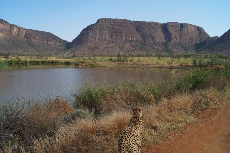 Last week I was in South-Africa and I shot this picture!