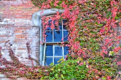 Fall on the walls.
