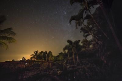 Stars over the tropics