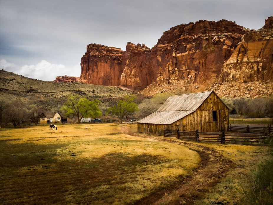 Pastoral scene at Capital Reef National Park
