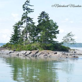 This is an Awesome little Island on one of the Outlets, Bailey Island, Maine