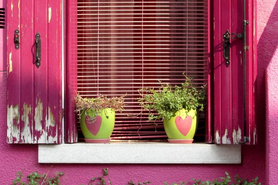 Two Plant Pots On A Window Ledge