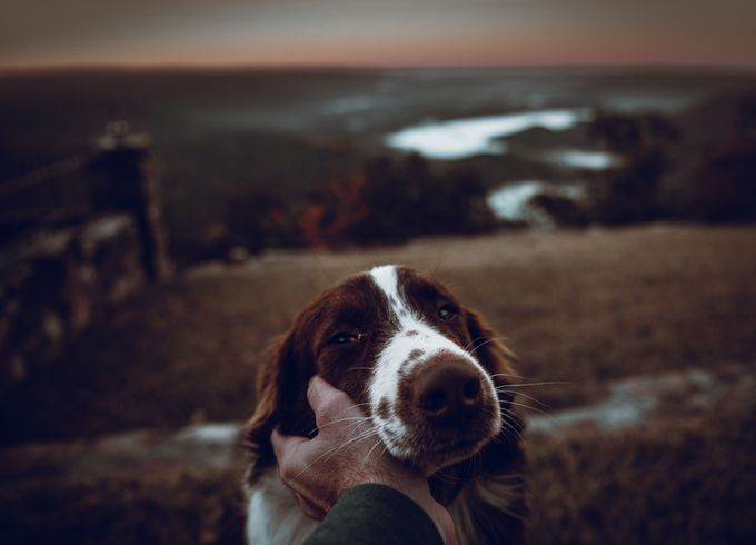 Best Buddies by albaker - People And Animals Photo Contest