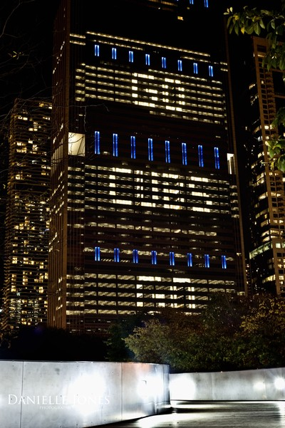 Chicago 88 logo