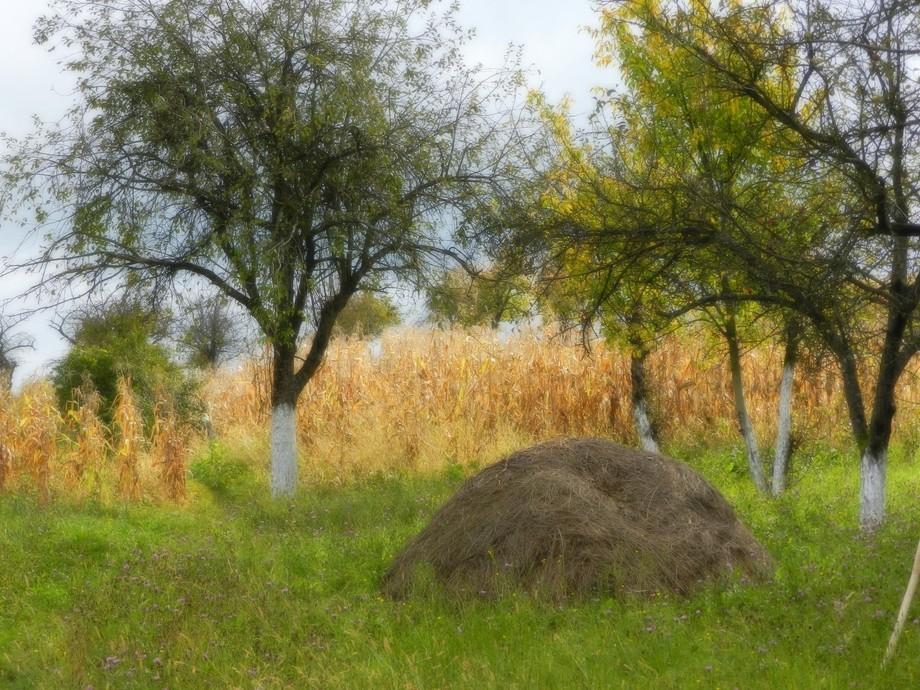 Countryside amazingly beautiful Romania