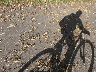 Biking through Fall