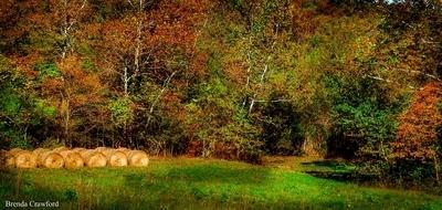 Harvest in the Ozark Foothills