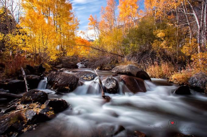 Fall at Bishop Creek by SylwiaUrbaniak - Streams In Nature Photo Contest
