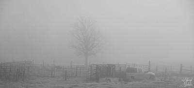 Foggy Morning for the Farmer