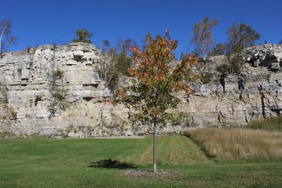 Fall Rock Wall