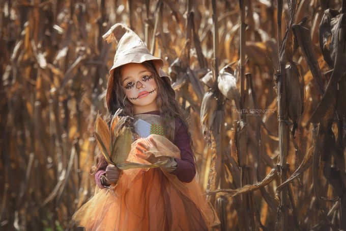 Talita_springer_photography by TalitaSpringerPhotography - Halloween Photo Contest 2017