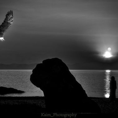 Eagle and the lady on the beach
