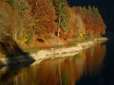 Lac Montriond in Autumn