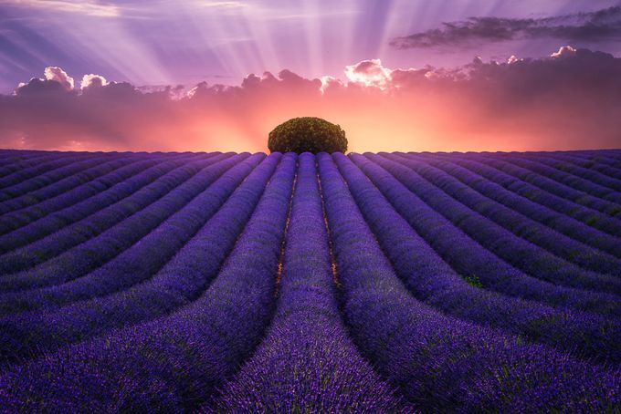 Colorful Landscapes Photo Contest Winners