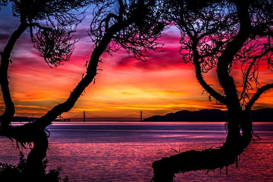 This photo was taken from Golden Gate fields just across the bay from San Francisco. This still r...