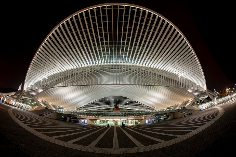 The beautiful railway station (designed by Santiago Calatrava  and opened in the year 2009) of th...