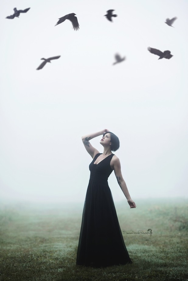 The ravens call by ShannonAlexander - Mist And Drizzle Photo Contest