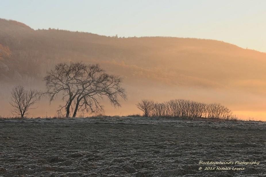 Gatineau Hills in morning mist