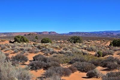 Desert Vista #3