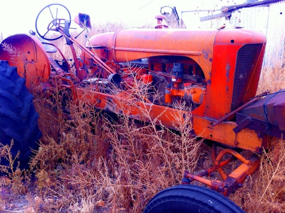 This is a friends tractor. His cows ate all the spark plug wires and distributor cap wires, befor...