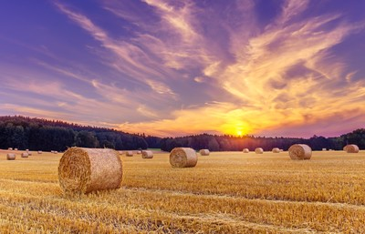 Hay bales and the setting sun