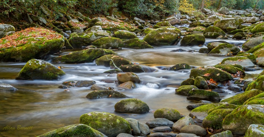 Great Smoky Mountains National Park, Little River Elkmount