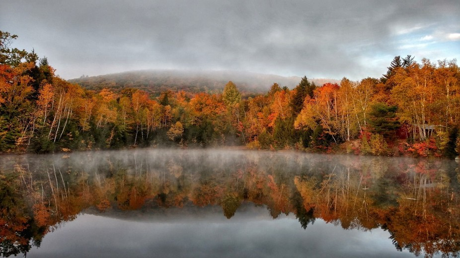 This was taken in the White Mountains, NH area.    My wife and I were out for a morning walk near...