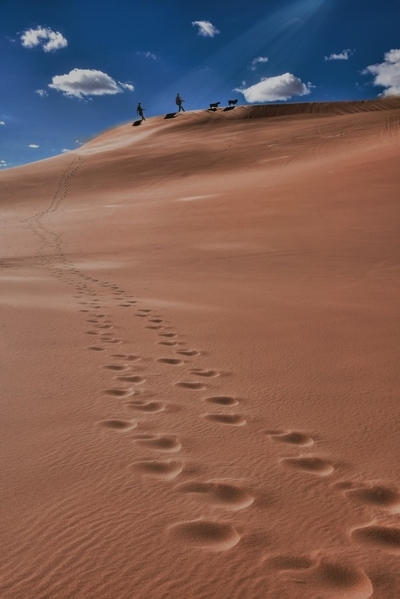 Sun Dunes
