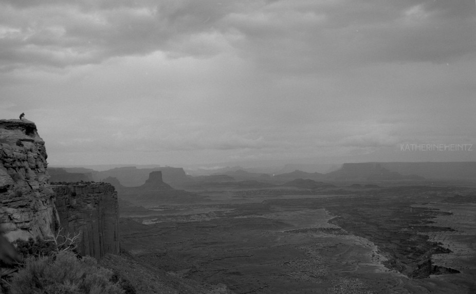 Canyonlands National Park shot with Pentax k1000 on kentmere black and white film