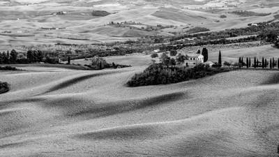 Plowed Tuscan Romance