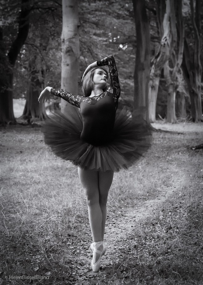 Dancing in the Woods by helenbissellbland - Lets Dance Photo Contest