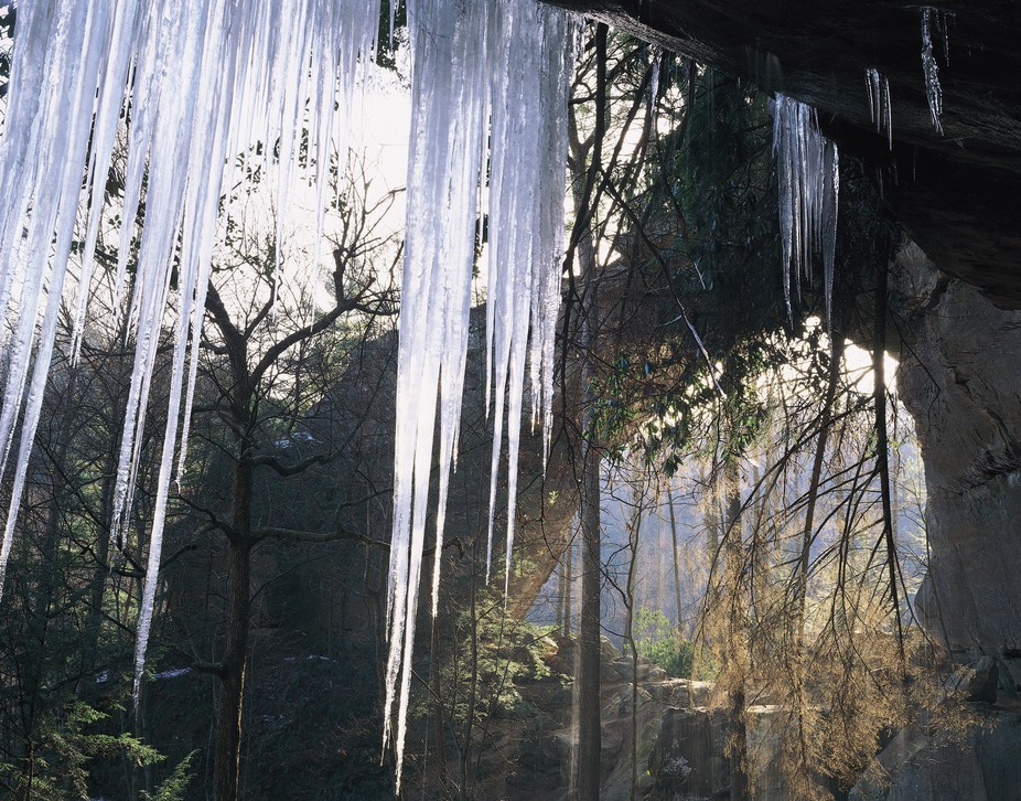 These ice cycles grew to 10 feet or more and hung just outside the rock ledge I slept on.  And wh...