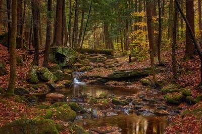 Adirondack Hike