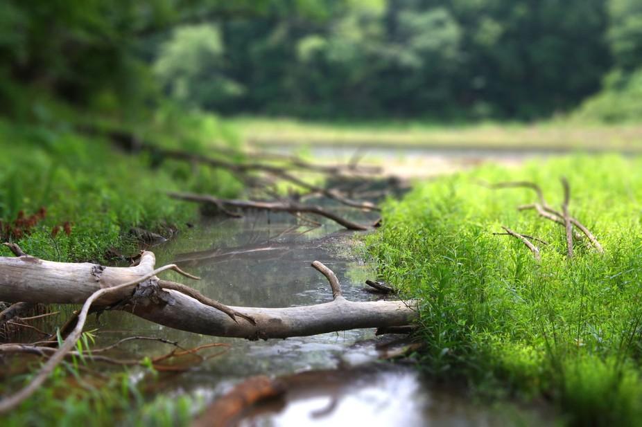 Tilt Shift River