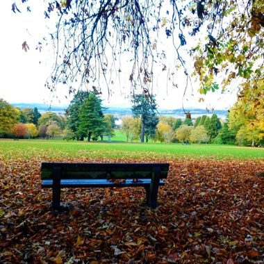 My local park with stunning Autumn views