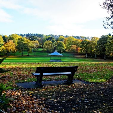 local Park bench with beautiful Autumnal views