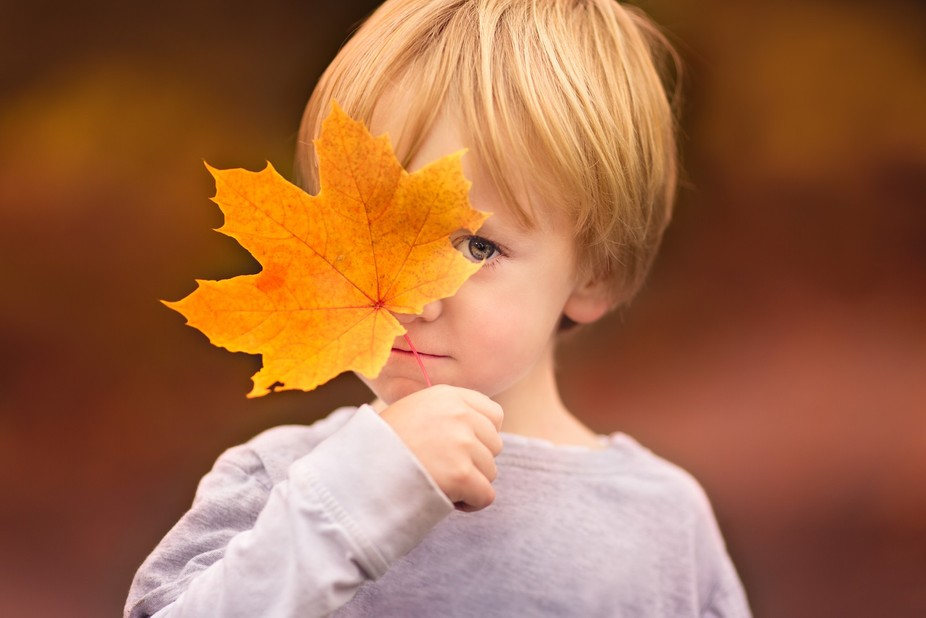 Playing peek-a-boo with the leaves