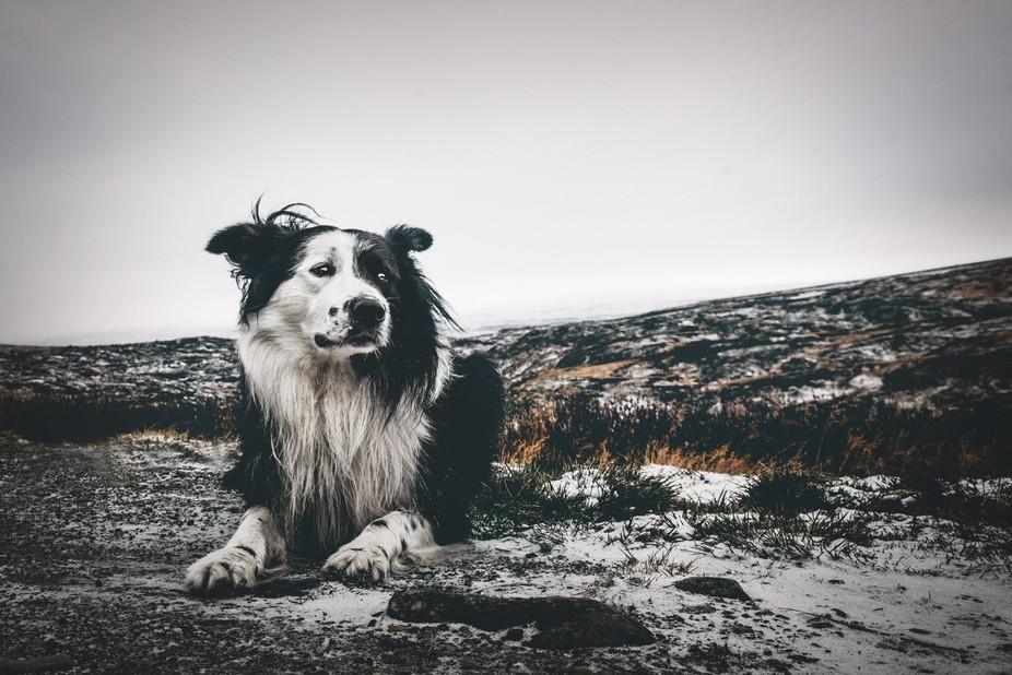 At Hardangervidda