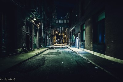 Gotham Nights