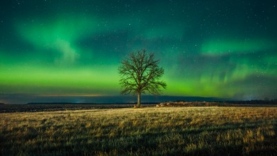 Beausejour Northern Lights 3