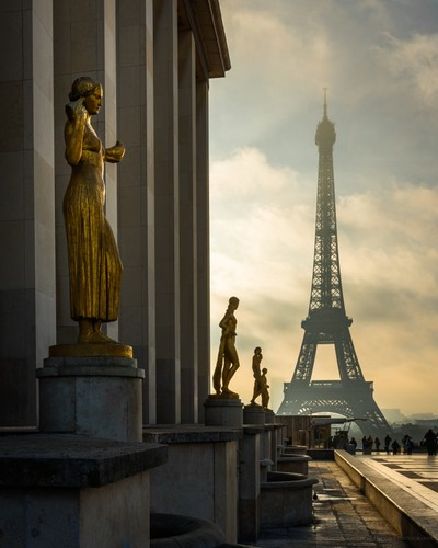 Golden Mornings in Paris