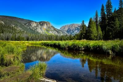 Meadows-Rocky Mountain National Park