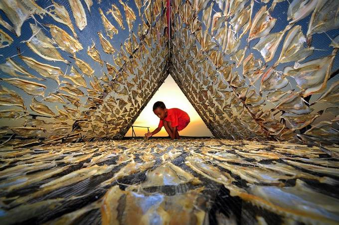 FISH DRYING THIN by chueardi - Your Point Of View Photo Contest