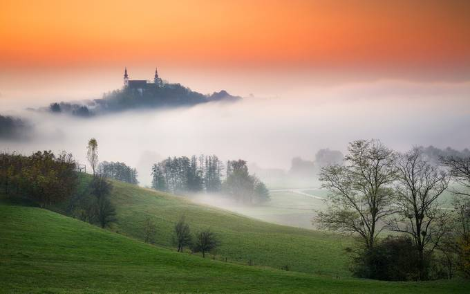 Foggy morning by TomazKlemensak - Around the World Photo Contest By Discovery