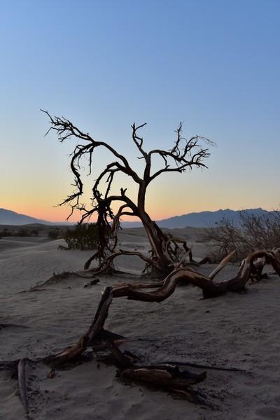 Desert Sunset - Death Valley