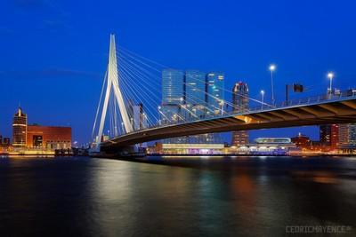 Rotterdam - Erasmus Bridge (NL)