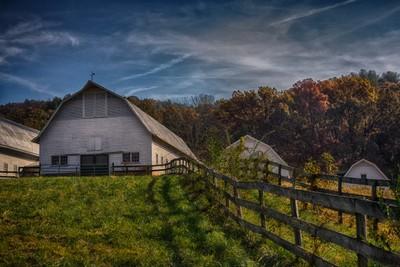 Sky Brook Farms
