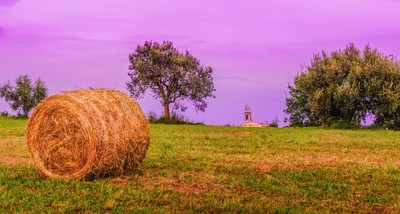 Hay Bale and Campanile. Evening in Lombardy