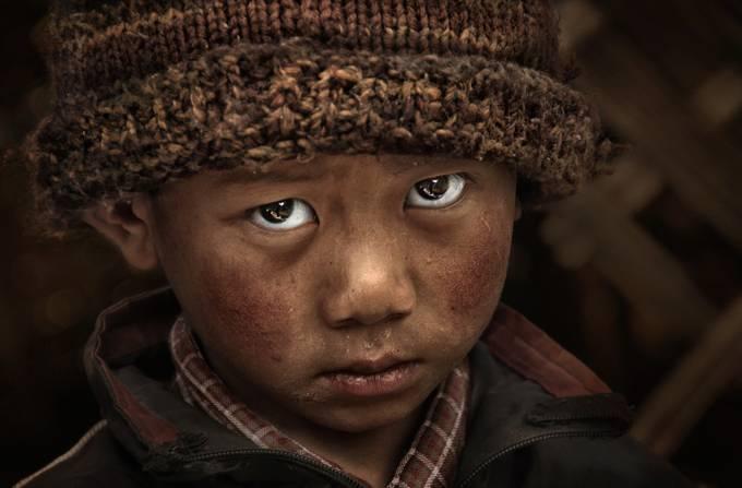 Tones Of Brown Photo Contest Winner