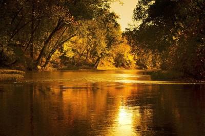 Liquid Golden River
